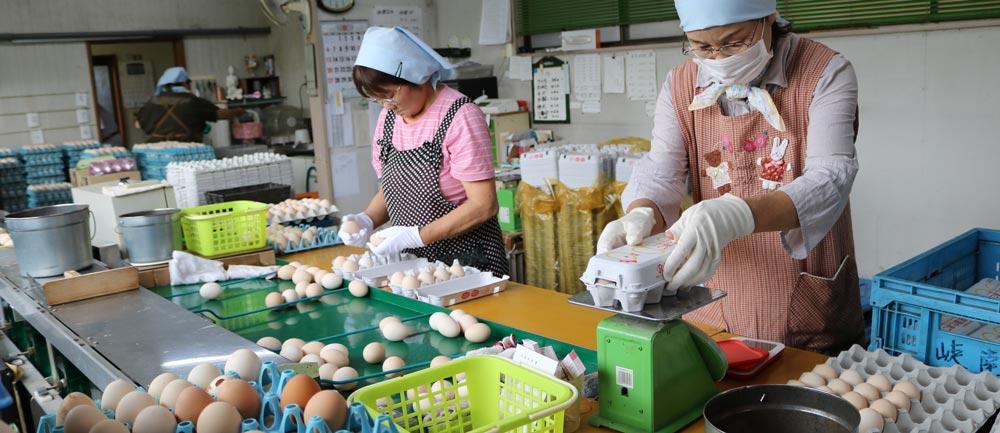 …おいしい 卵を食べていますか? @ パルシステム山梨一宮センター | 笛吹市 | 山梨県 | 日本